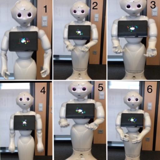 Wahrnehmung multimodal kommunizierter Unsicherheit in der Mensch–Roboter-Interaktion; ?>